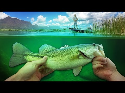 Fishing in Super Clear Water w/Travis Moran! - Vlog (Bass Fishing) Powered by LTB
