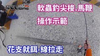 如何用軟蟲釣起尖梭和馬鞭魚, 花支軟絲就餌狀況的一種--線拉直(鐵板釣 Shore jigging エギング 軟絲 アオリイカ Eging 花枝 餌木 大尾魷 釣魚 Taiwan )