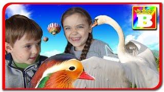 #2 Bogdan`s Show si Jasmina Show la Zooclub. Invatam animalele domestice si sunetele lor. VLOG.