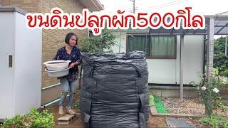 ขนดินปลูกผัก500กิโลแม่บ้านญี่ปุ่นสายอึด อยู่บ้านทำอะไรบ้าง อยากรู้ต้องดู