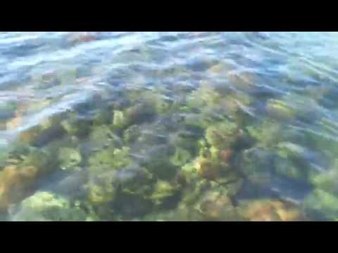 Affordable Roatan Waterfront Real Estate For Sale -  Coral Reef Just off The Boat Dock