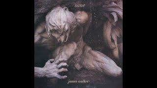 James Walker - Sane (Official Audio)