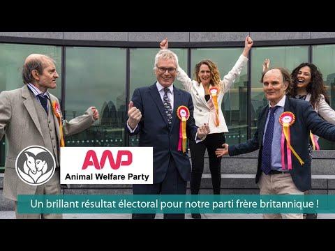 Excellent résultat électoral pour le parti frère Animal Welfare Party au Royaume-Uni