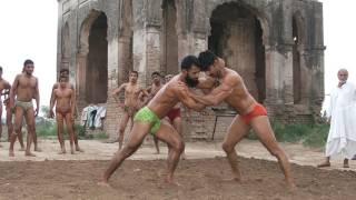 Provincial sport of Punjab (Pakistan) - پنجاب صوبائی کھیل