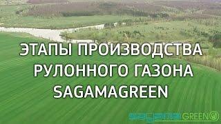 Этапы производства рулонного газона - производитель Sagama Green(, 2016-07-22T12:06:16.000Z)