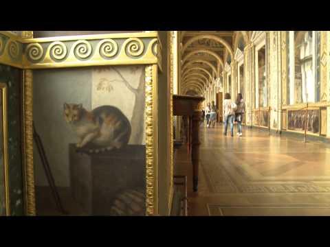 Les chats du musée de l'Ermitage à Saint-Petersbourg