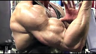 Biceps courts : Quels exercices?