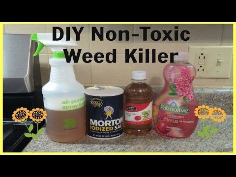 diy-non-toxic-weed-killer---quick-&-super-easy!