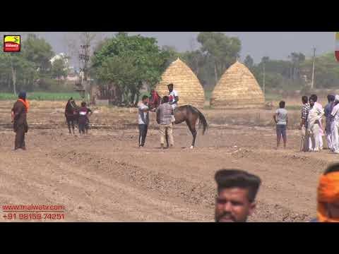KUTHA KHERI (Patiala) ਘੋੜਿਆਂ ਦੀਆਂ ਦੌੜਾਂ / HORSE RACES [ May-2019 ] 🔴