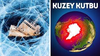 Kuzey Kutbunda Neden Kimse Hayatta Kalamaz