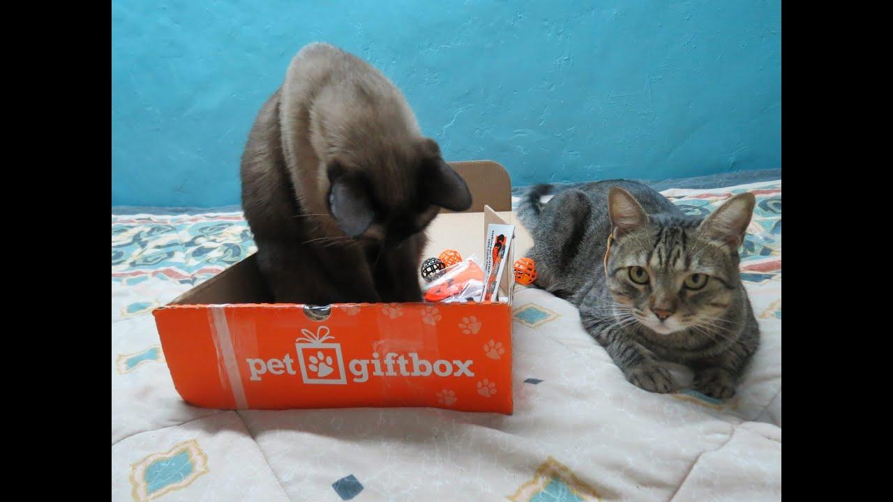 Pet Gift Box Octubre Cajita de Suscripci n Mensual Para