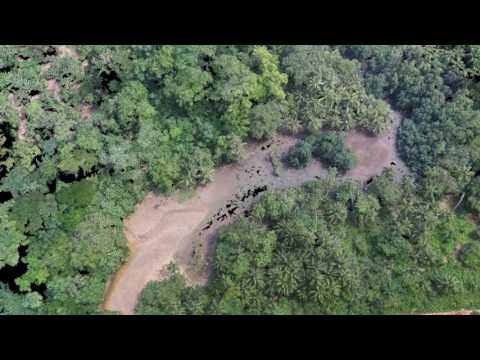 Drone 3D   Mangrove Map -  Salgada Beach Bay - Praia Salgada e Mangal -São Tomé  & Príncipe