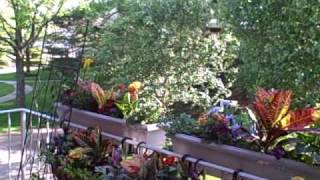 How To Secure Window Boxes On Deck Or Patio Railings
