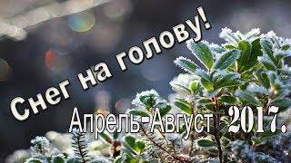 Сюрпризы погоды. Апрель-Август. Снег и жара.Запорожье 19.4.2017.