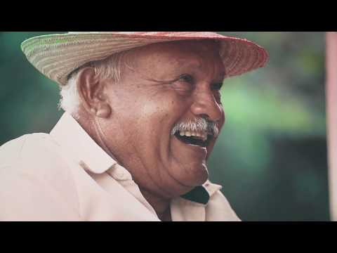 Musiquita de la Patria - Rondón ya salió (con Letra)