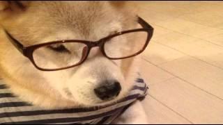 Singer : たそ助 Title : MajiでKoiする5秒前 懐かしの恋歌ばかりうpし...