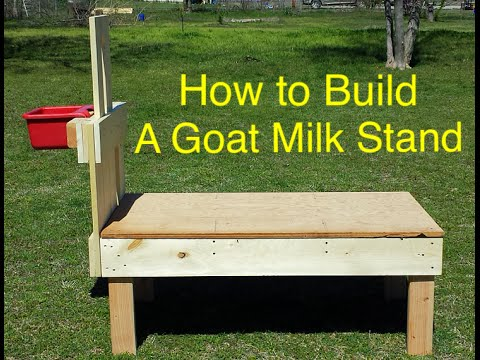 How To Build A Dairy Goat Milk Stand Start To Finish