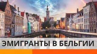 Как в Бельгии помогают приезжим украинцам