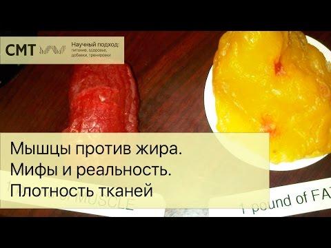 Что нельзя есть на завтрак • НОВОСТИ В ФОТОГРАФИЯХ