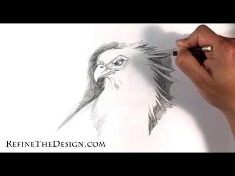 How to Draw a Secretary Bird - Tattoo Art Drawings