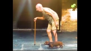 ADORABLE Dog is Old Man's Best Friend | The Dodo