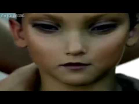 System Of A Down - Aerials (Sub. Español + Lyrics) - Official Video