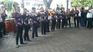 Banda Perla De Michoacán - Los Viejitos