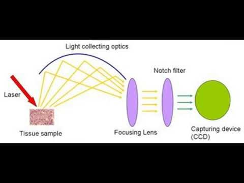 why the sky is blue? - scattering of light - raman effect - YouTube