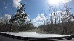 Hurricane Michael Impacts on Kinard FL