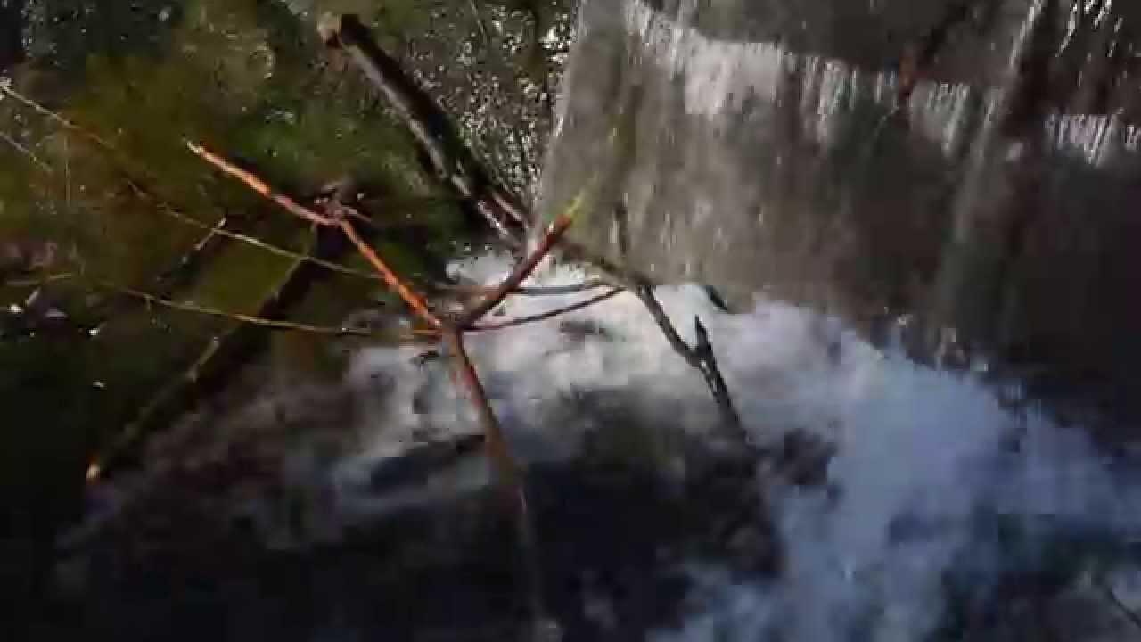 Nikon D5500 video sample (1080/50p) - YouTube