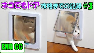 A record of conquering the anywhere cat door  #3  Nekokichi seriously challenges!【Eng CC】