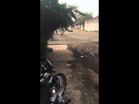 Shameless idiot in Idgah Hills, Bhopal