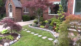 The Summer Garden - Japanese maple garden  (Front yard and Bonsai)
