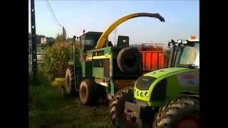 Silagem de Milho 2014 Braga / Corn Silage / Maize Silage / John Deere 6750, Same Rubin 120