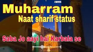 Saba Jo aayi hai Karbala | Milad Raza Qadri Status | Muharram Status | muharram special status