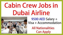 DUBAI AIRLINE NEEDS CABIN CREW || SALARY 9500 AED || JOBS IN DUBAI