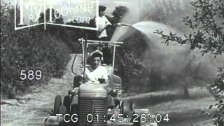 Stock Footage - 1940's KIDS SPRAY INSECTICIDE ON TREES /FARM/AGRICULTURE