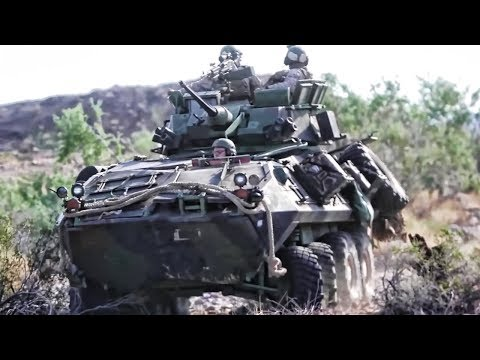 U.S. Marines LAR • Firing The M242 Bushmaster Chain Gun