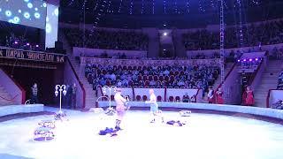 цирк на Фонтанке (Желание летать) 140 лет. 2018год