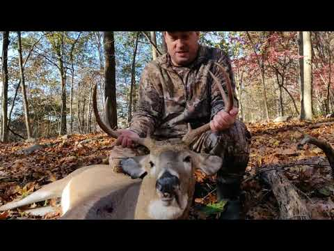 Connecticut Bow Hunting 2019