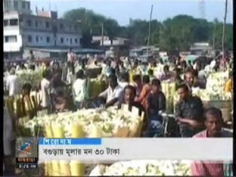 maasranga TV , 23-11-11-- imrul -- comilla city & jarera manobbandhan