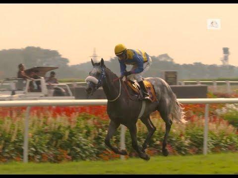 MYSORE DERBY WINNER 2018 - Sir Cecil