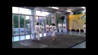 Training 2: Shorinji Kempo - Auckland Central Branch, New Zealand