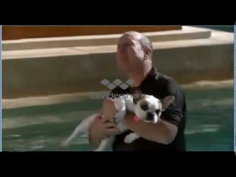Modern Family - Jay and the dog - YouTube