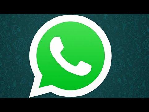 Всё о СТАТУСЕ в WhatsApp   Как создать, переслать и удалить статус   Как отвечать на статусы друзей