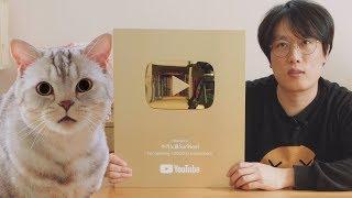 7년만에 골드버튼 받았어요! 고양이들의 반응은? thumbnail