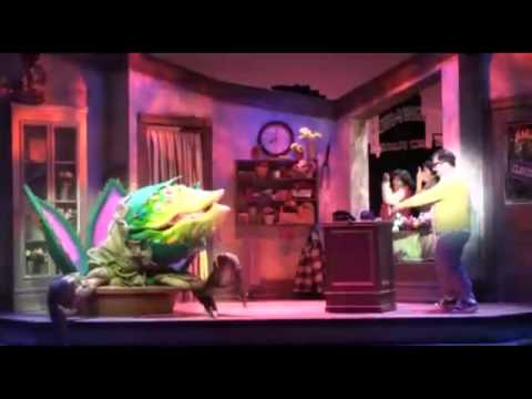 Feed me - Little Shop of Horrors
