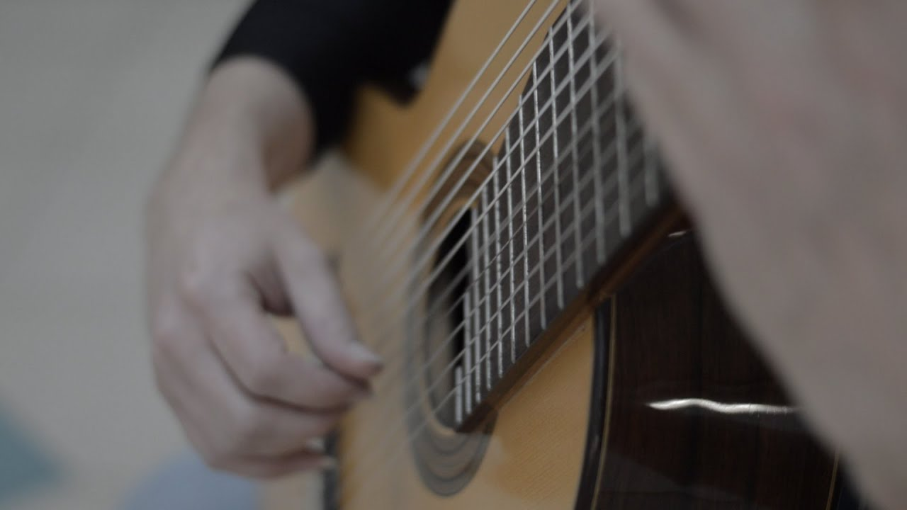 Bach Chaconne played by Moran Wasser on 11 string guitar - Classical
