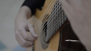 J.S.Bach - Chaconne - 11 string guitar