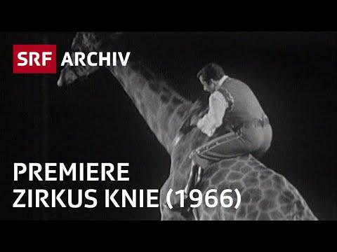 Premiere Circus Knie (1966)